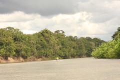 Guyana-9956