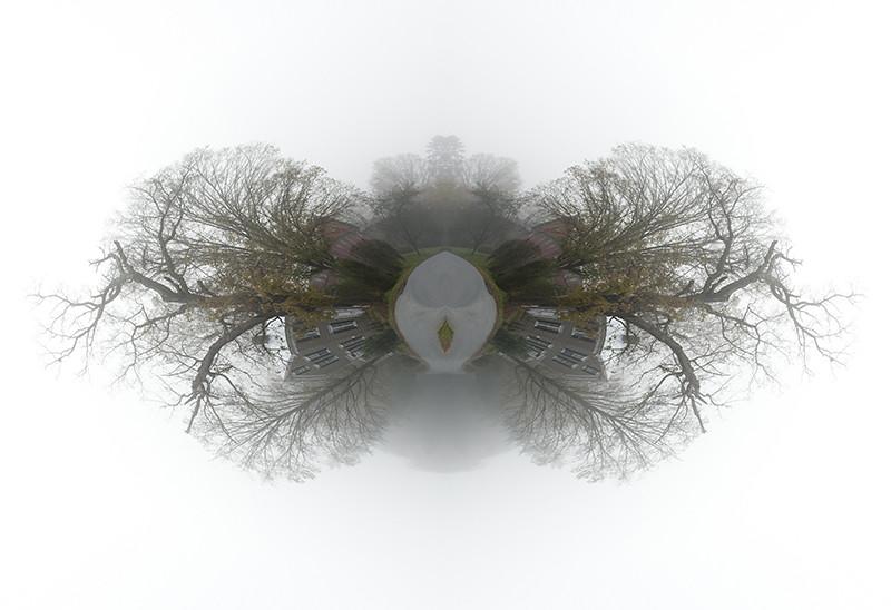 003_6576-2