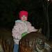 zoo_lights_20111119_21951
