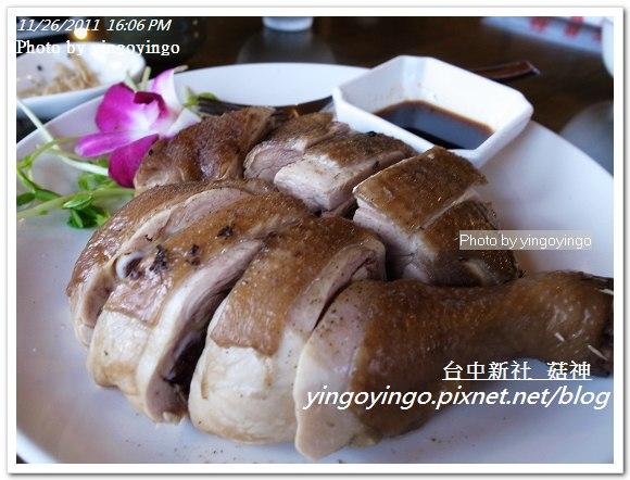 台中新社_菇神20111126_R0044222