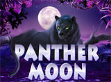 Online Panther Moon Slots Review