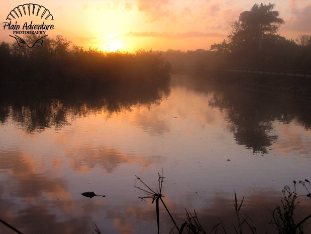 Sunrise on the Anhinga Trail