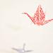 cranes by ▼▲Antilight ▲▼
