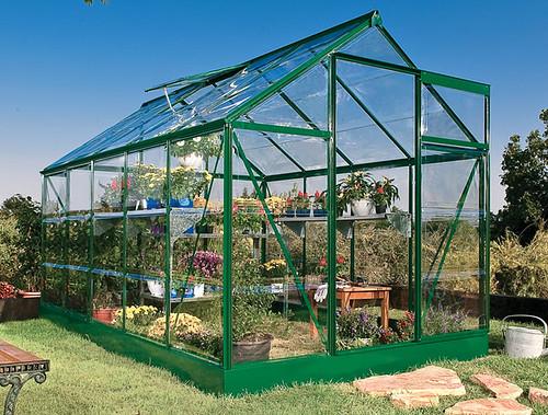 Greenhouse Palram Greenline 6x10 Greenhouse