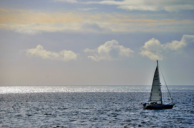 Ocean Sail. By R J Watson