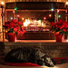 Waiting for Santa - 50/52 by ND Wind Twins