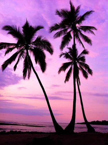 sunset sea beach hawaii twilight purple onthego iphone puuhonuaohonaunau