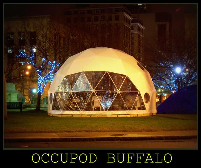 Occupod Buffalo