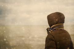 [フリー画像素材] 人物, 河川・湖, 人物 - 後ろ姿, 雪 ID:201112270600