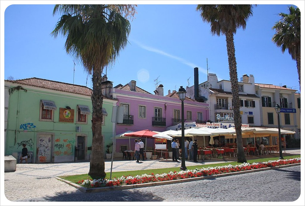 cascais street with palm trees