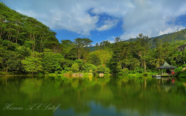 صور رحلتــــي لبلاد الطبيعة البكر ( سريلانكا )