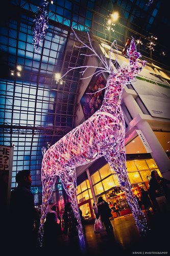 Reindeer at Eaton Centre
