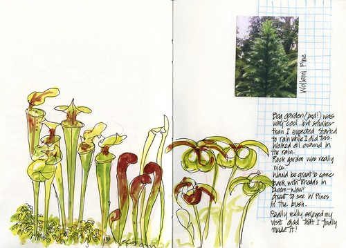 Summer! 27TU_03 Mt Tomah Bog Garden