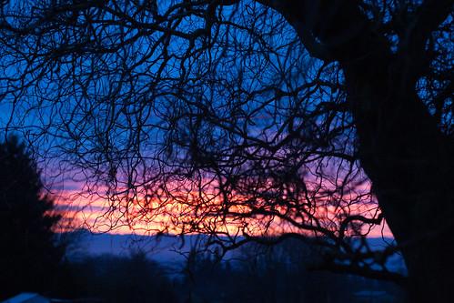 nature sunrise walnuthill