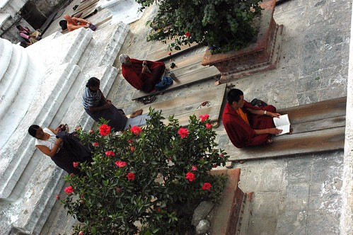 Buddhist practitioners on the eastern side of Jarung Kashor Stupa, having completed prostrations, all take a break or pray, early morning, flowering bush, Boudha, Kathmandu, Nepal by Wonderlane