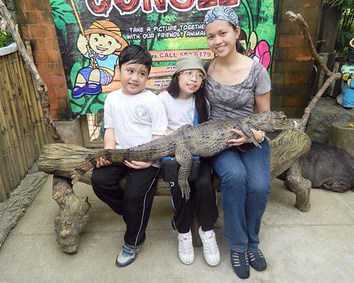 kiddie-zoo