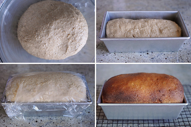 honey-oatmeal-sandwich-bread-making-of
