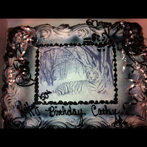 365 - Cathy's Birthday Cake by SpaceyMom