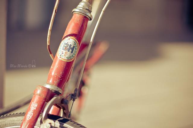 La bicicleta vermella + 1