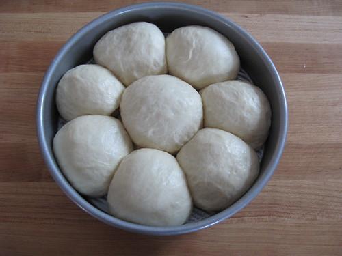 Dinner rolls have risen