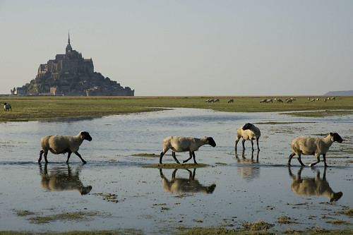 France - Normandie - Mont-Saint-Michel