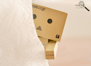 Danbo is too shy to say hello.