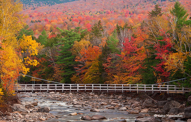 Bridge across Swift River