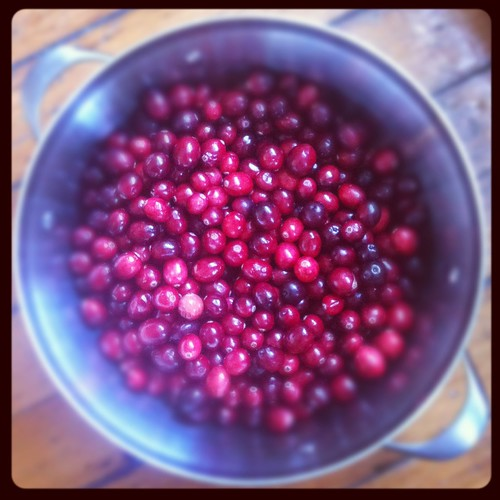 Fermented Cranberries and Ginger (Recipe) Preserving Recipes January Ginger Cranberry