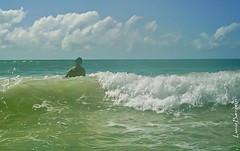 Mergulho no mar
