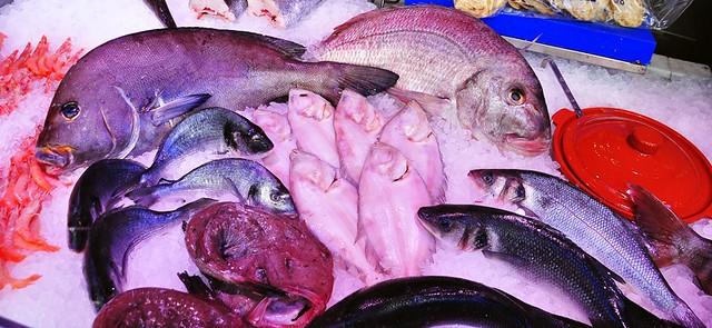 Fish on Display -- Mercado de San Miguel, Madrid, Spain