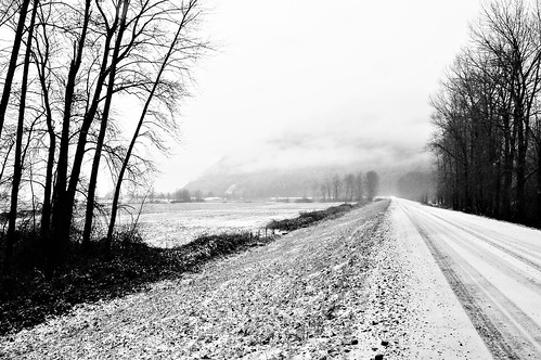 The Lond Road (B&W)