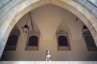 Vigilando desde el Palacio Nacional de Sintra, Portugal. 1994