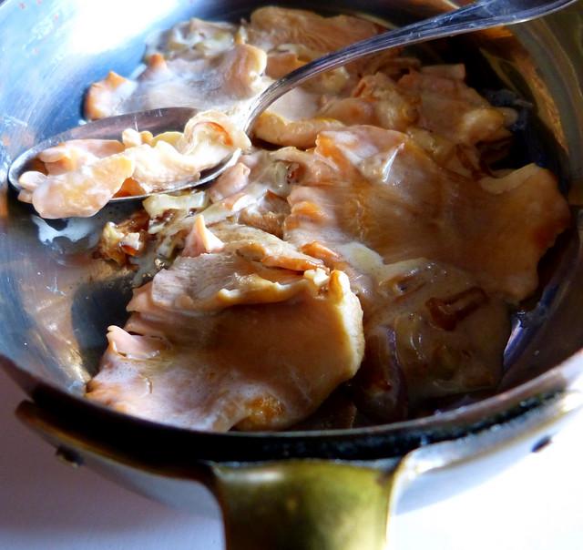 Pink Oyster Mushroom Ragoût
