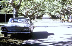 64 Chrysler Newport