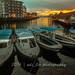 _MG_7112 by Dahari Bin Haji Lisani