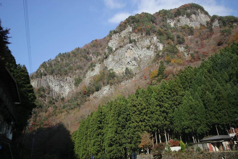 20141124-曽爾高原-0343.jpg