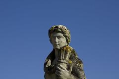 Stony Statue Portrait