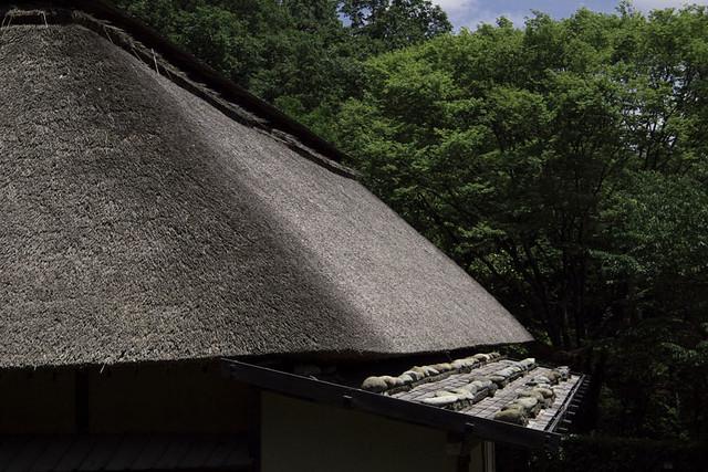 110604_121909_生田緑地_日本民家園