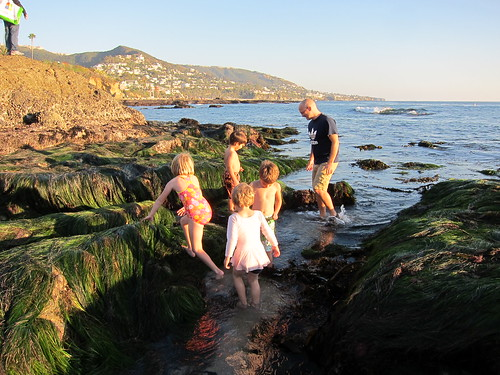 First day in the tide pools