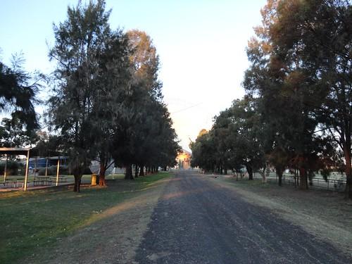 Parkes