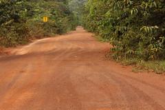 Guyana-9138