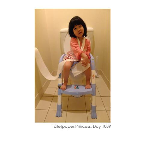 toiletpaper-05