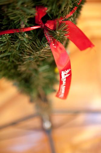 ChristmasTreeBalsamHill-3