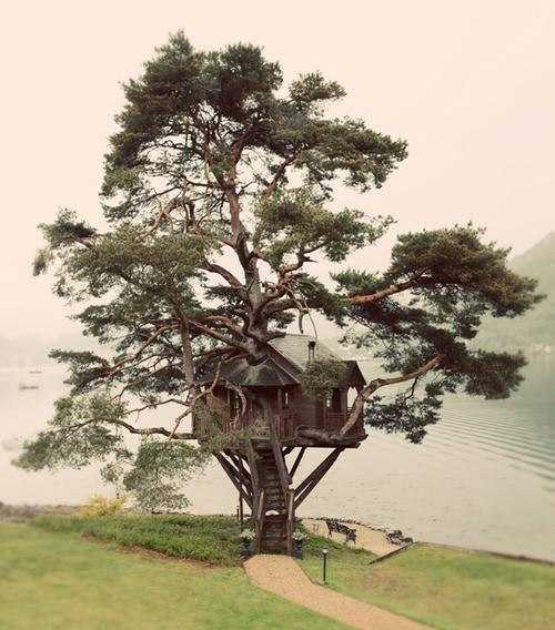 treehouse_020