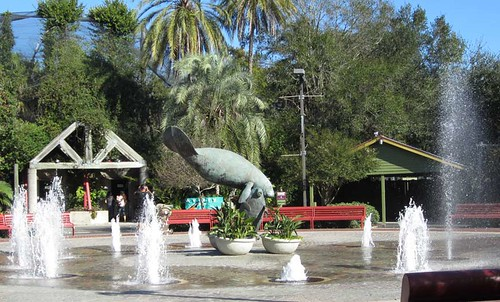11.26.11 - Tampa Zoo Manatee Fountain