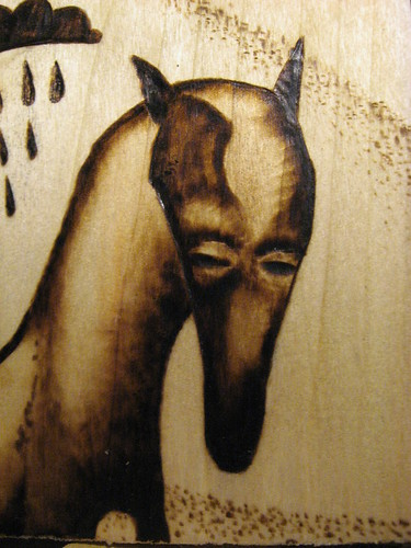 sad horses closeup
