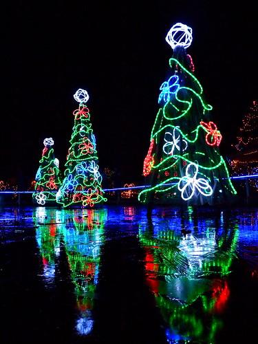 VanDusen Botanical Garden Festival of Lights - 2011