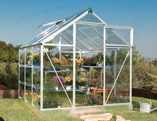 Greenhouse Palram Silverline 6x6 Greenhouse