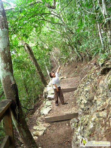 hiking trail belize rain forest