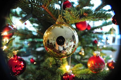 Christmas tree meeee